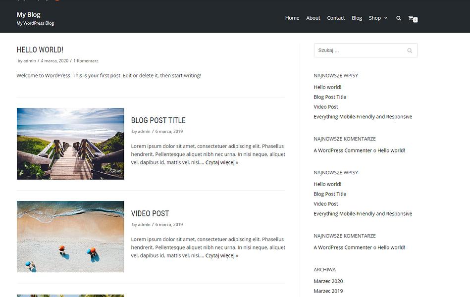 Strona bloga